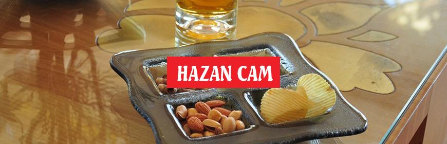 Hazan Cam